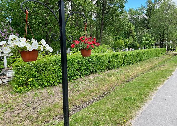 Нововолковское кладбище фото
